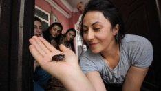 Ev'de buldular, temizlediler. Hakkari'de yaşayan aile, bu böceğe gözleri gibi bakıyor. Nedenini öğrenince siz de hak vereceksiniz