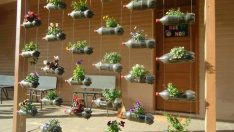 Hobi bahçesi ve balkonlarınıza pet şişelerle şahane fikirler