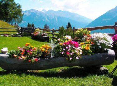 Bahçeler için dekoratif ve yaratıcı fikirler