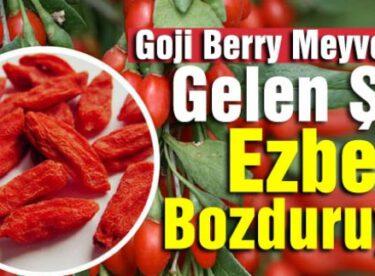 Goji Berry Meyvesiyle Gelen Şifa Ezber Bozduruyor