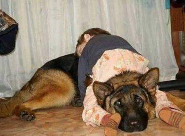 Çocuklar buldukları her yerde uykuya dalabilir.