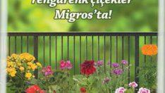 Migroskop-13-19-Nisan-2017 Süper İndirimli Ürünler Katalogu İçin Yarın Son gün