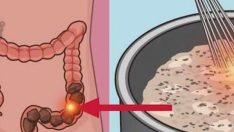 Bağırsaklarda Biriken Toksinleri Temizleyip Üç Haftada 10 Kilo Verin