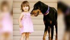Köpeği Kızını Isırınca Önce Çok Şaşırdı – Nedenini Anlayınca Köpeğini Daha Da Sevdi