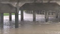 Köprünün Altında Garip Bir Şey Farkeden 17 Yaşındaki Çocuk Derhal Suya Atladı
