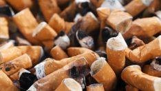 Finlandiyadaki Yeni Bir Kanuna Göre Çocukların Yanında Sigara İçmek Yasak