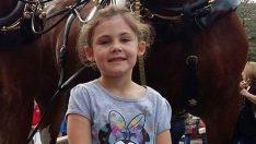 Baba, Kızının Fotoğrafını Çekiyordu Arkadaki At O Anda Bakın Ne Yaptı