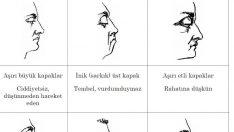 Yüz Okuma Teknikleri… Bu püf noktalarını öğrendikten sonra karşınızdakinin bir yüz ifadesinden her şeyi anlayacaksınız
