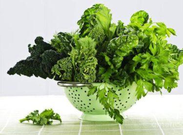 Yeşilliklerinizi Taze Tutabileceğiniz 5 Yöntem