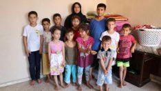 Savaştan kaçtı, 16 çocukla tek odalı evde yaşıyor