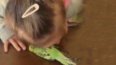 Kızını kuşu öldürmekle suçlayıp videoya çeken anneye tepkiler çığ gibi 😡