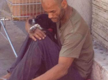 Evsiz Adamın Sokak Köpekleri İçin Yaptığını Görünce Duygulanacaksınız