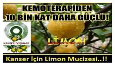 Kansere Karşı  Kemoterapiden On Bin  Kat Daha Güçlü Mucizevi Limon