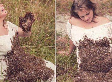 Hamile Kadın Arılarla Fotoğraf Çektirdi – Doğumdan 6 Gün Önce Acı Haberi Aldı